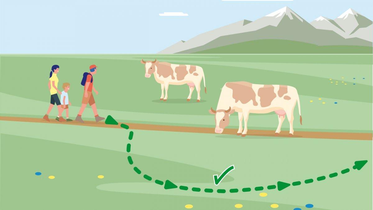 © Landwirtschaftskammer Tirol