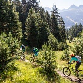 © Tirol Werbung/Haiden Erwin, bikeboard