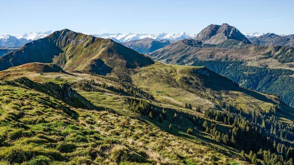 © Kitzbüheler Alpen/Peter Vonier