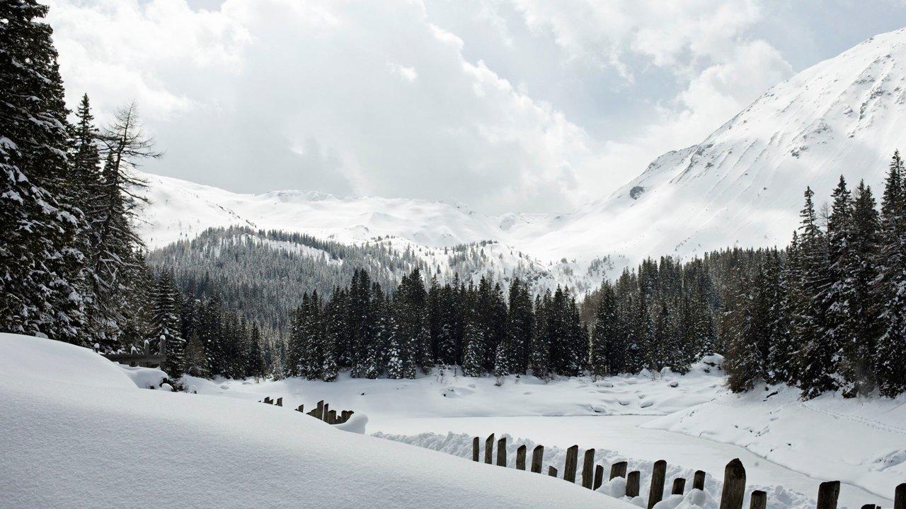 Obernberg in einem Seitental des Wipptals, © Tirol Werbung/Lisa Hörterer